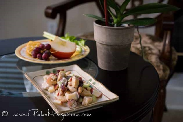 AIP Chicken Salad Recipe With Grapes, Apple, and Celery
