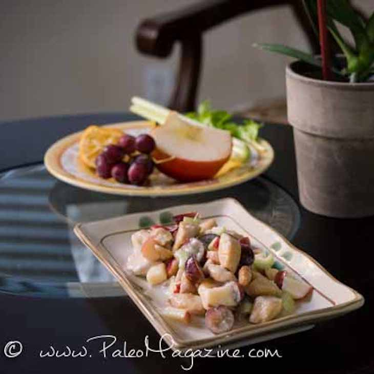 Paleo and AIP Chicken Salad Recipe With Grapes, Apple, and Celery